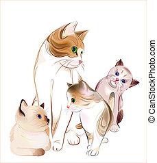 gato, kittens., feliz, family.