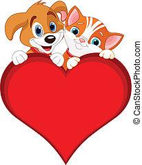 gato, valentine, sinal, cão