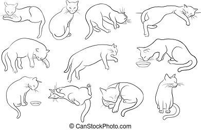gatos, linha, jogo, silueta