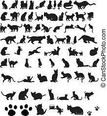 gatos, silhuetas, vetorial