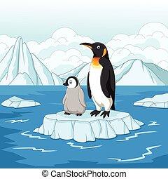 gelo, mãe, bebê, caixa papelão, floe, pingüim