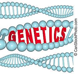 genética, -, palavra, adn