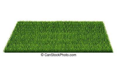 grama campo, quadrado, verde