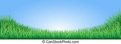 grama campo, verde, ilustração
