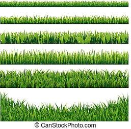 grande, fronteiras, capim, verde, jogo