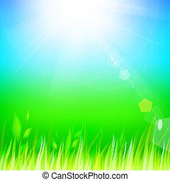 grass., verde