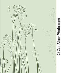 herbário, delicado, fundo, natureza