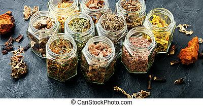 herbário, ervas, medicinal, medicina