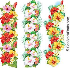 hibisco, flores, guirlanda
