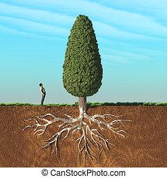 homem grande, árvore, olhe para cima