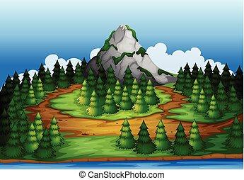 ilha, cheio, árvores pinho