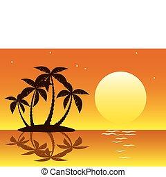 ilha tropical, palma