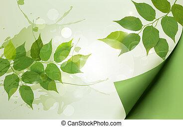 illustration., natureza, primavera, leaves., vetorial, experiência verde