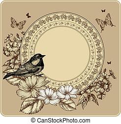 illustration., vindima, quadro, vetorial, rosas, florescer, phlox., pássaro