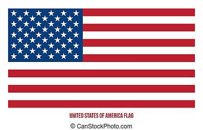 ilustração, bandeira estados unida, américa, vetorial, experiência., branca
