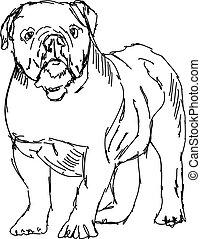 ilustração, branca, desenho, cão, vetorial, experiência.