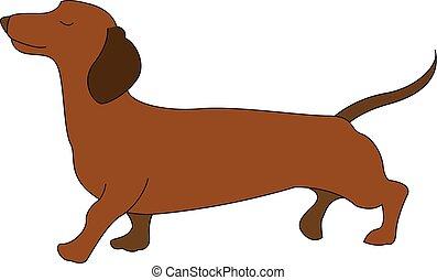 ilustração, branca, vetorial, experiência., cão, bassê