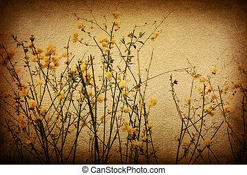 imagem, ou, texto, papel, texturas, espaço, antigas, perfeitos, fundo, -, flor
