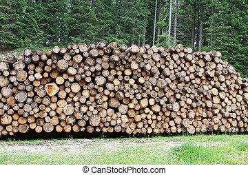 indústria, montanhas, log, loggers, mobília, corte