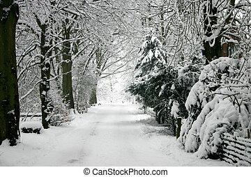 inverno