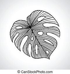 isolated., macro, folha, palma, pretas