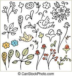 isolated., set., mão, vetorial, floral, desenhado