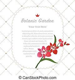 jardim botanic, coloridos, natureza, memorando, textura, aquarela, vetorial, quadro, vermelho, orquídea