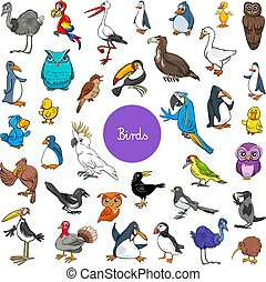 jogo, animal, grande, caricatura, caráteres, pássaros