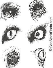 jogo, eps8, mão, vetorial, animal, eyes., drawn.