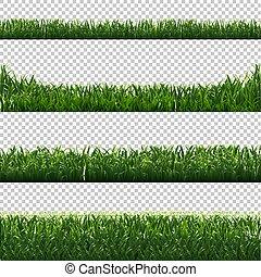 jogo, experiência verde, fronteiras, capim, transparente