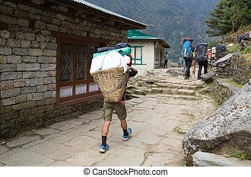 jornada, sagarmatha, nacional, nepal., himalaias, parque, mountaineers, zeladores