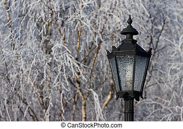 lâmpada, inverno