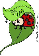 ladybug, folha