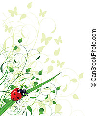 ladybug, primavera, fundo