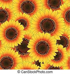 laranja, amarela, girassol, fundo, seamless