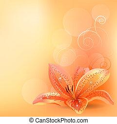 laranja, pastel, lírio, fundo, luz