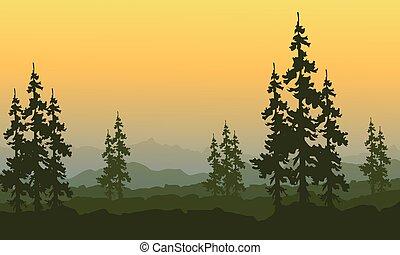 laranja, primavera, asseado, céu, paisagem