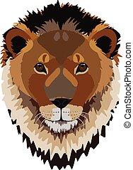 leão, cabeça masculina