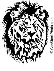 leão, macho