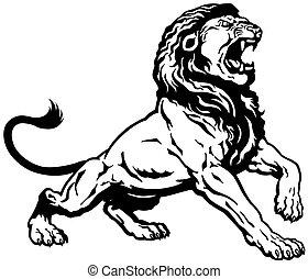 leão, rugindo, pretas, branca