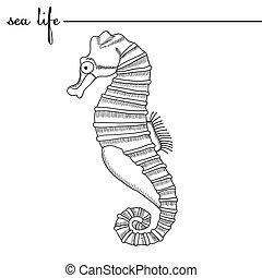 life., mão, esboços, pretas, vetorial, mar, doodle, desenhado, seahorse branco, original, drawing., illustration.
