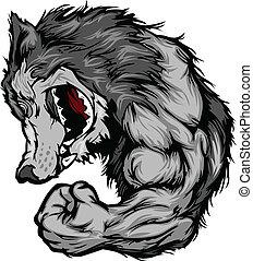 lobo, mascote, flexionar, caricatura, braço