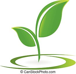 logotipo, vetorial, saúde, folheia, natureza