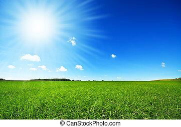 luminoso azul, fresco, céu, capim, verde