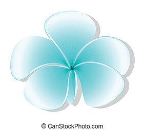 luz azul, flor