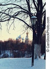 luz, rua, inverno árvore