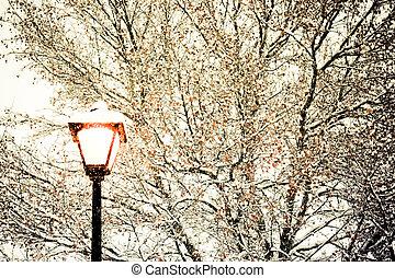 luz, rua, inverno