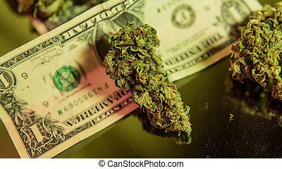 médico, cannabis, cura, strains, liberdade, close-up., legalize, marijuana