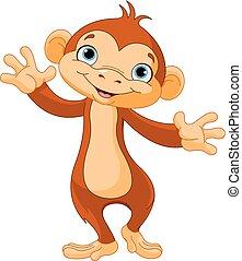 macaco, bebê
