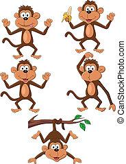 macaco, caricatura